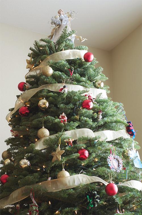 christmastree20120052_500