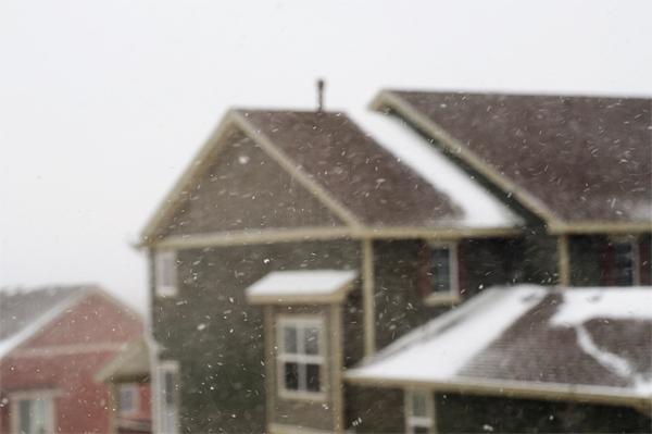 snow12192012_0072_600