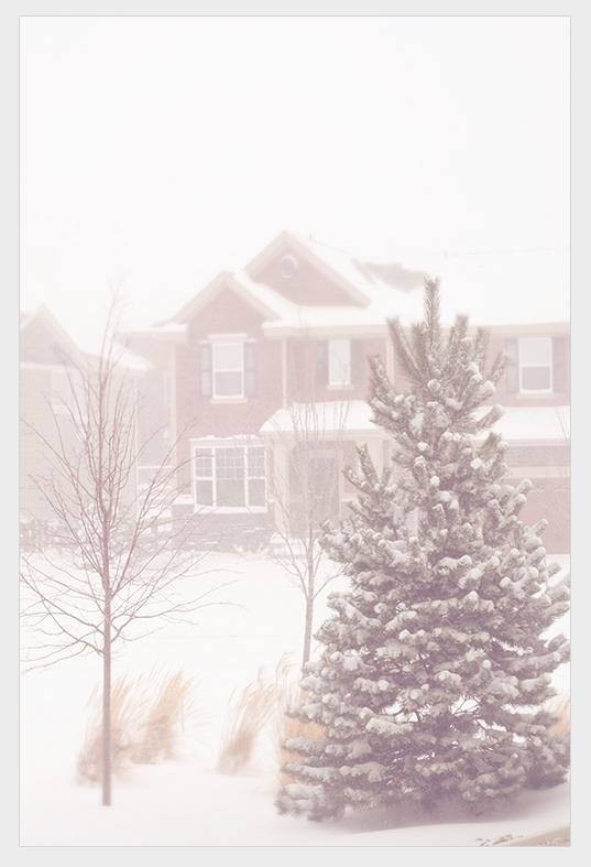 SNOW03232013_500brdr