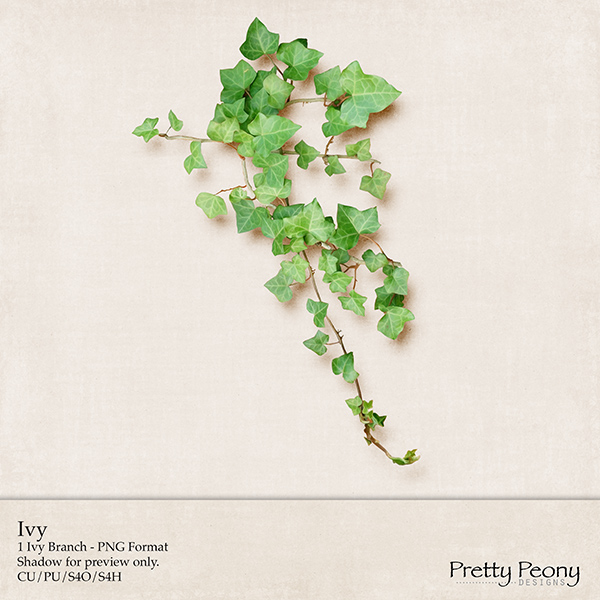 ppd_ivy_preview_600