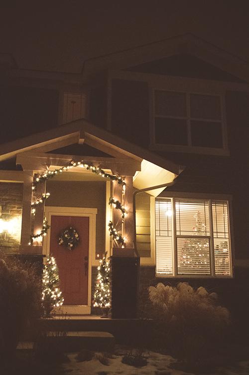 CHRISTMASTREE0019_500