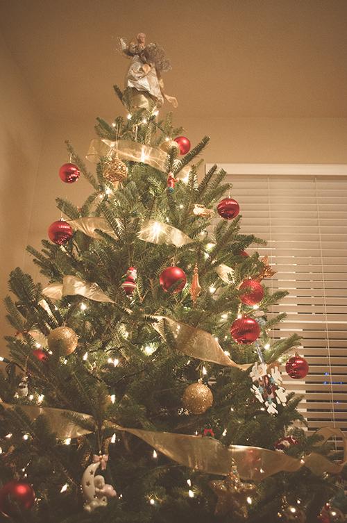 CHRISTMASTREE20130025_600
