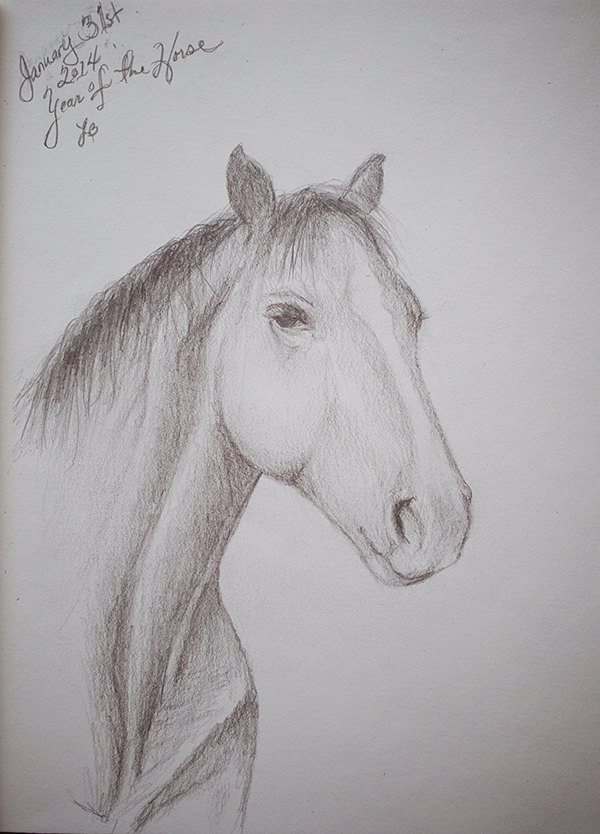 HORSE02012014_0002_600