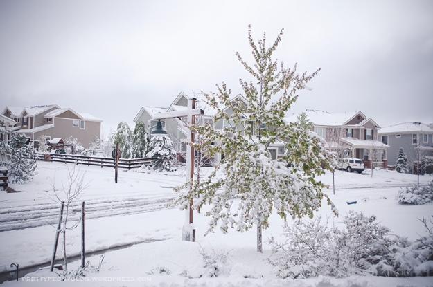 SNOW051020150012_840